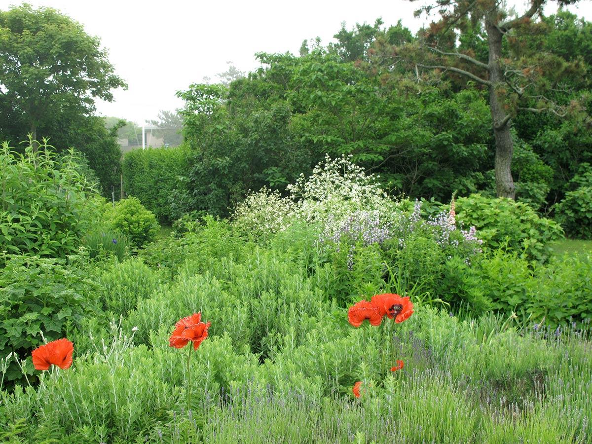 Gin Lane Farm Landscape Design